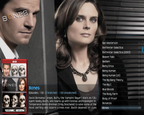 308.xbmc.with.logo.png